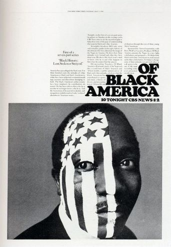 Black History: Lost Stolen, or Strayed Poster