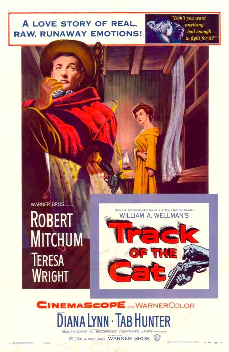 Track of the Cat Poster