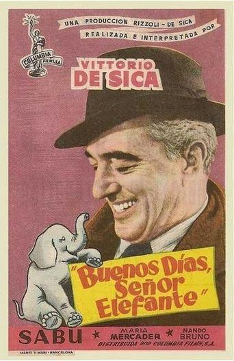 Buongiorno, elefante! Poster