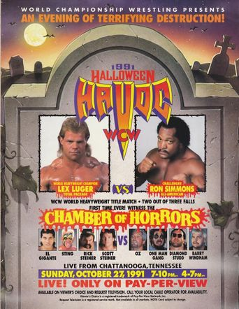 WCW Halloween Havoc 1991 Poster