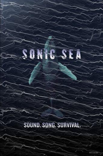 Sonic Sea Poster