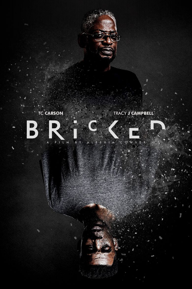 Bricked Poster