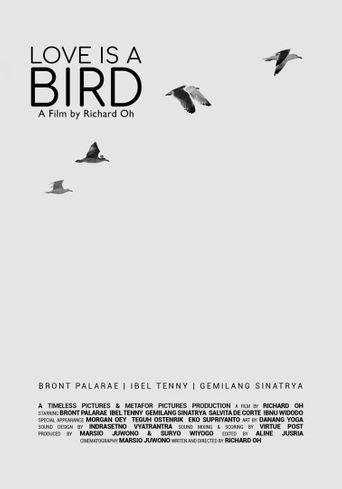 Love is A Bird Poster