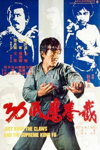 Fist of Fury 3 Poster