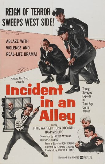 Incident in an Alley Poster