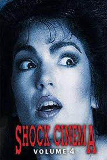 Shock Cinema: Volume Four Poster