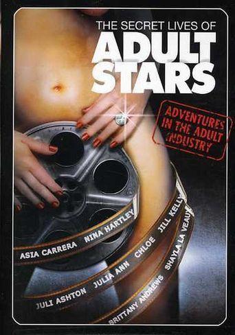 The Secret Lives of Adult Stars Poster