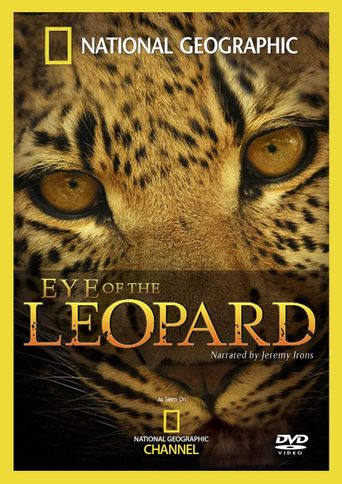 Eye of the Leopard Poster