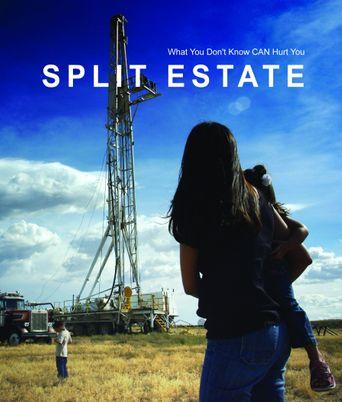 Split Estate Poster