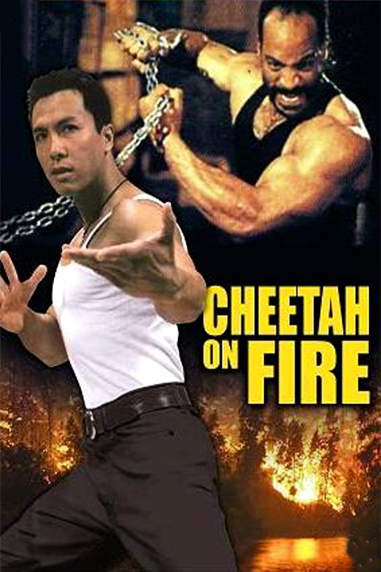 Cheetah On Fire Poster