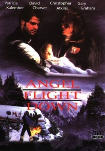 Angel Flight Down Poster