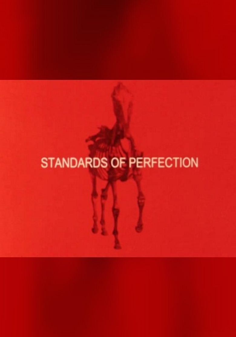 Standards of Perfection Poster