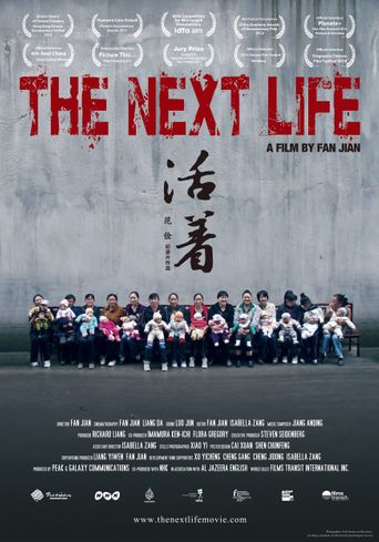 The Next Life Poster