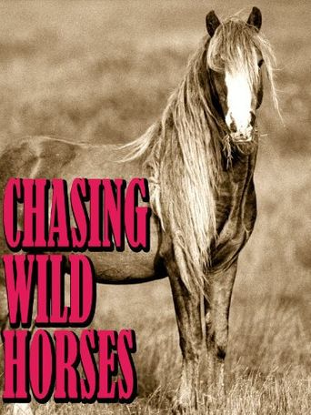 Chasing Wild Horses Poster