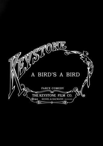 A Bird's a Bird Poster