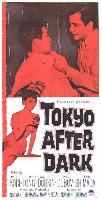 Tokyo After Dark Poster