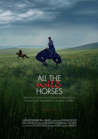 All the Wild Horses Poster