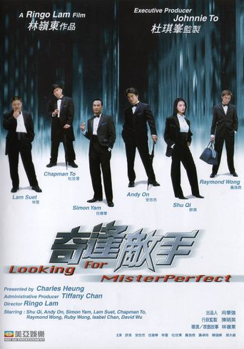 Looking for Mr. Perfect Poster