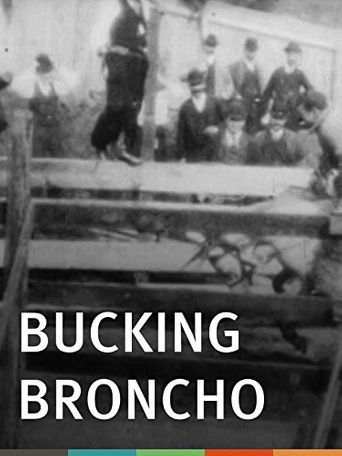 Bucking Broncho Poster