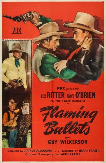 Flaming Bullets Poster