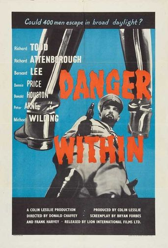 Danger Within Poster