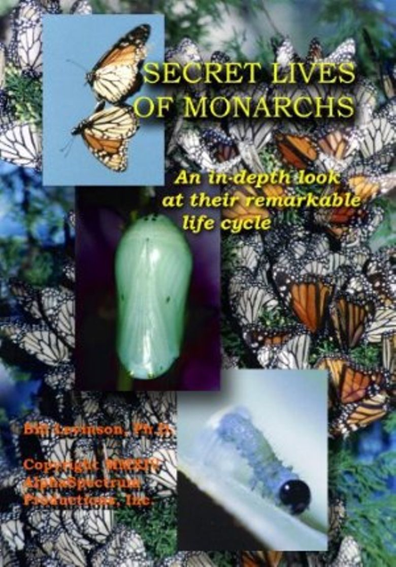 Watch Secret Lives of Monarchs