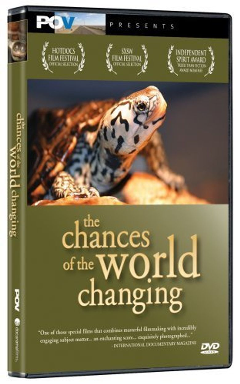 The Chances of the World Changing Poster