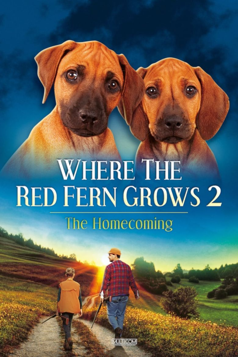 Where The Red Fern Grows Part 2 Poster