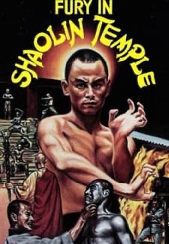 Fury in the Shaolin Temple Poster