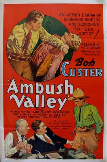 Ambush Valley Poster