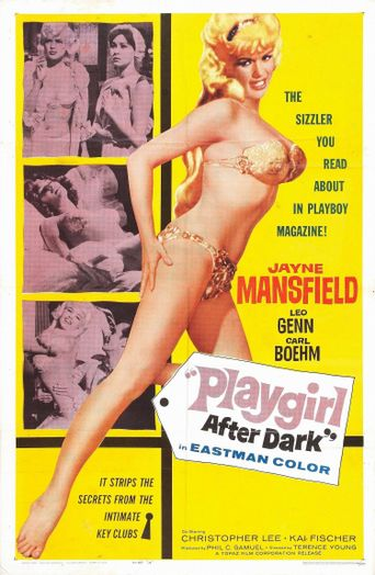 Playgirl after Dark Poster
