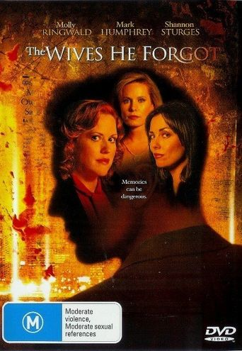 The Wives He Forgot Poster