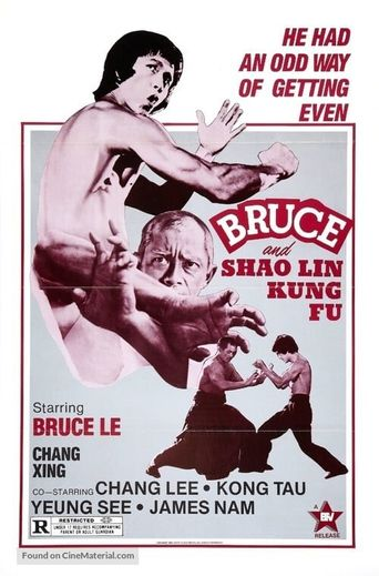 Bruce and Shaolin Kung Fu Poster