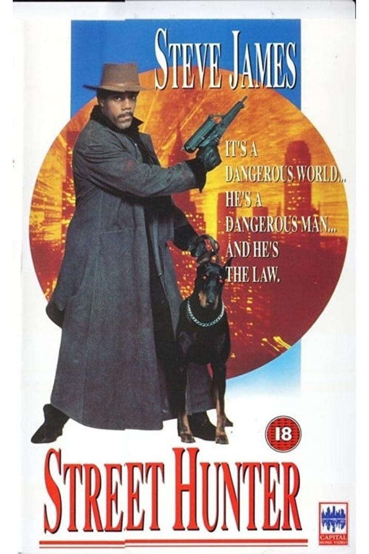 Street Hunter Poster