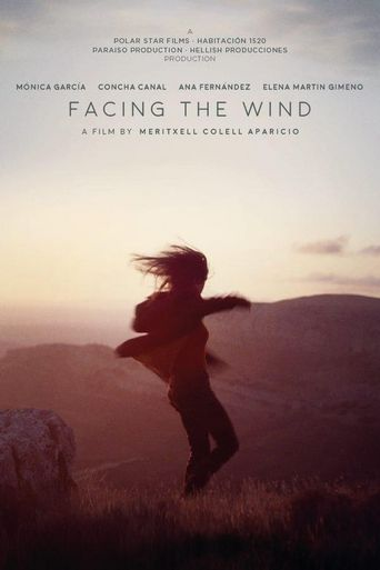 Facing the Wind Poster