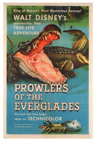 Prowlers of the Everglades Poster