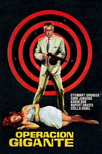 Target for Killing Poster