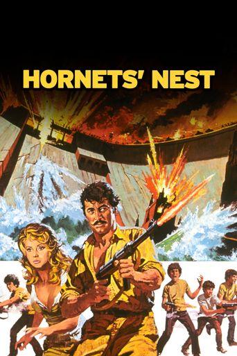 Watch Hornet's Nest