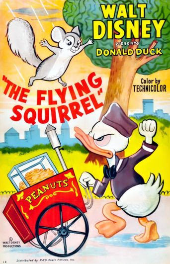 The Flying Squirrel Poster