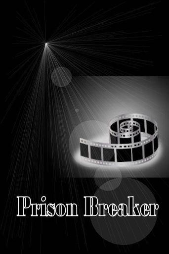 Prison Breaker Poster