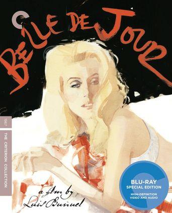 The Last Script: Remembering Luis Buñuel Poster