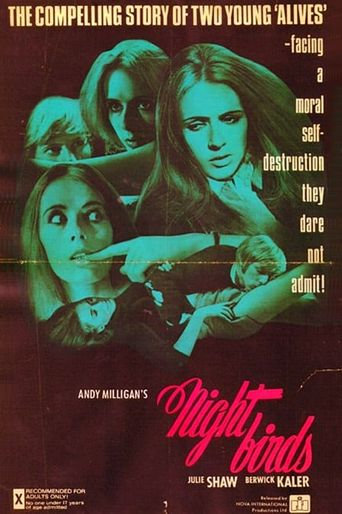 Nightbirds Poster