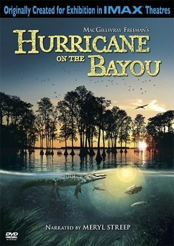 Hurricane on the Bayou Poster