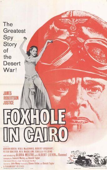 Foxhole in Cairo Poster