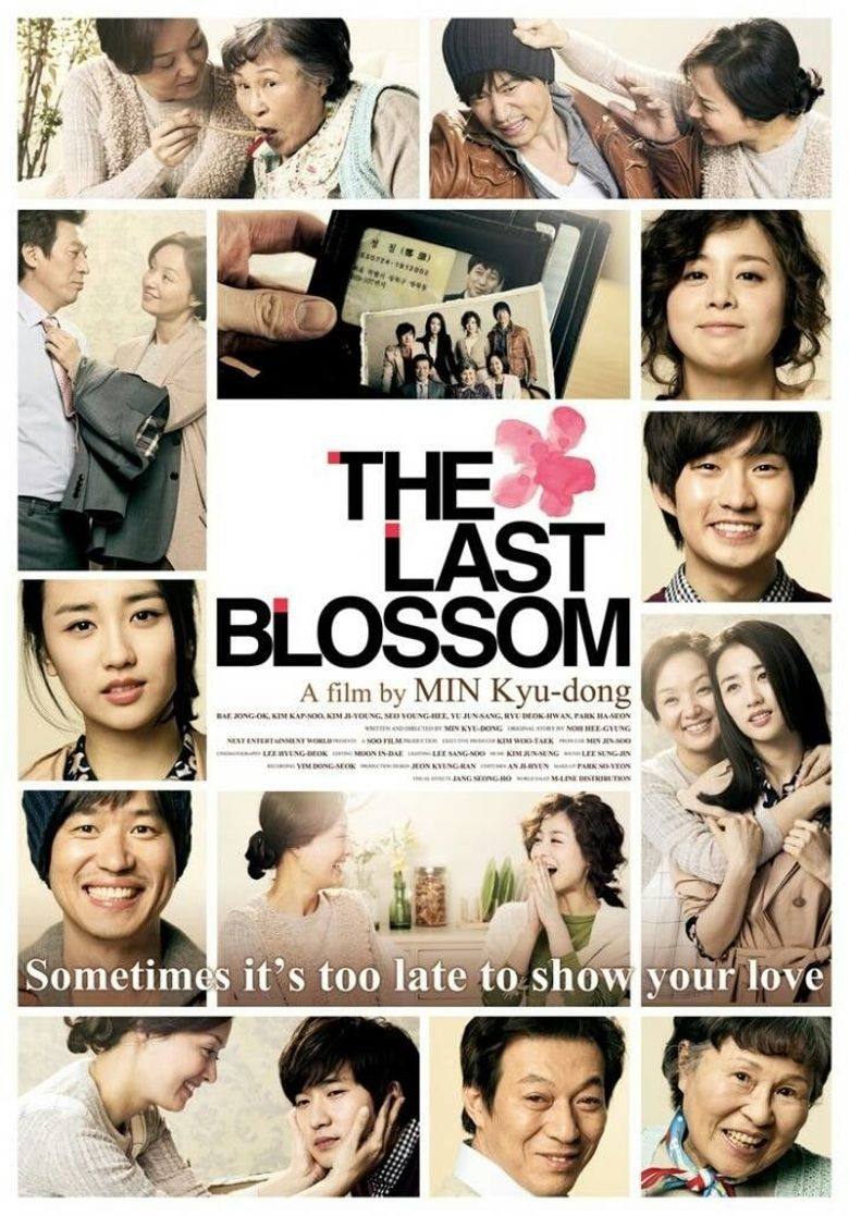 The Last Blossom Poster