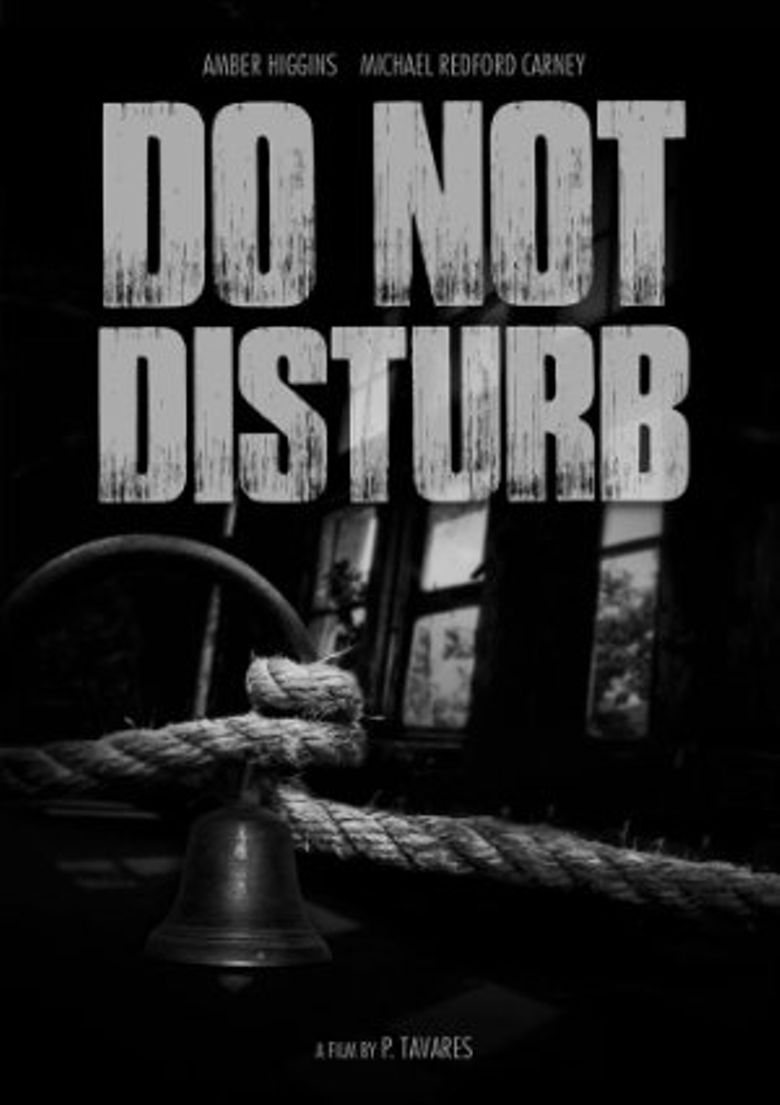Do Not Disturb! Poster