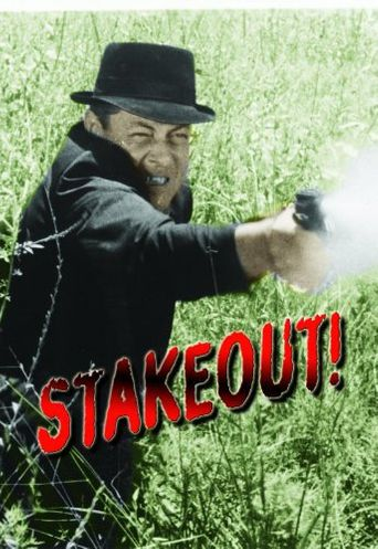 Stakeout! Poster