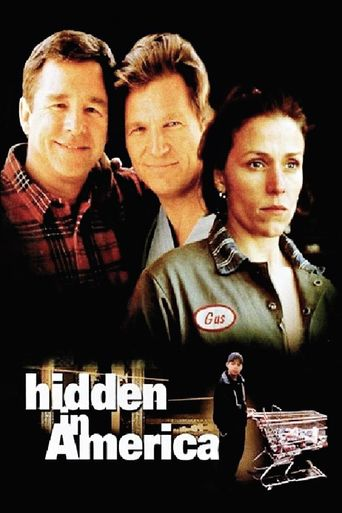 Hidden in America Poster
