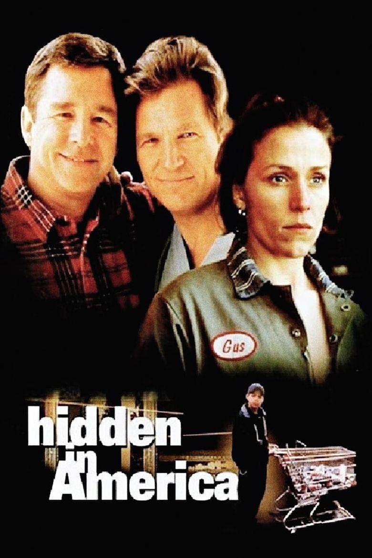 Hidden in America Poster