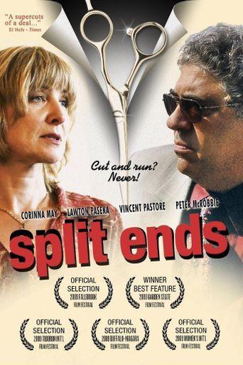 Split Ends Poster
